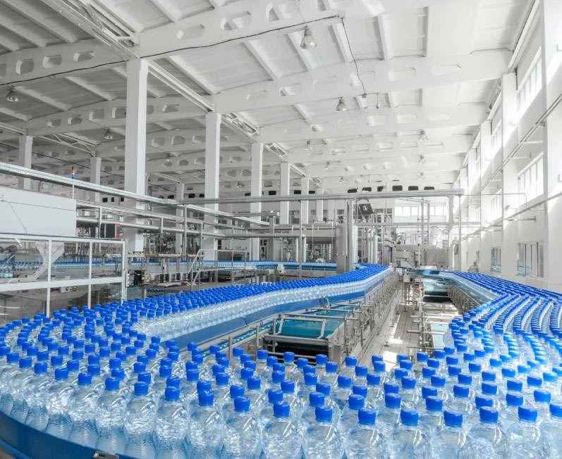 Mass Bottle Conveyor System Factory