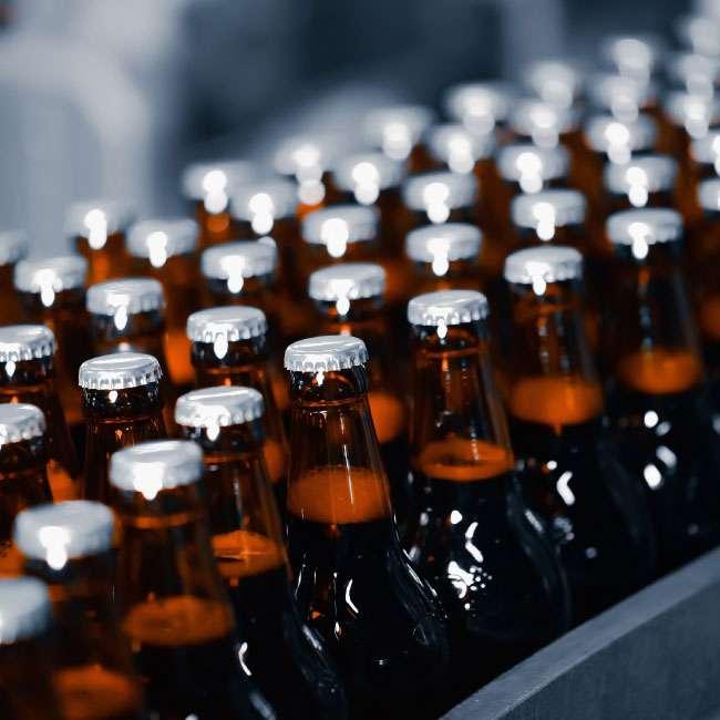 Craft Brew bottle conveyor system