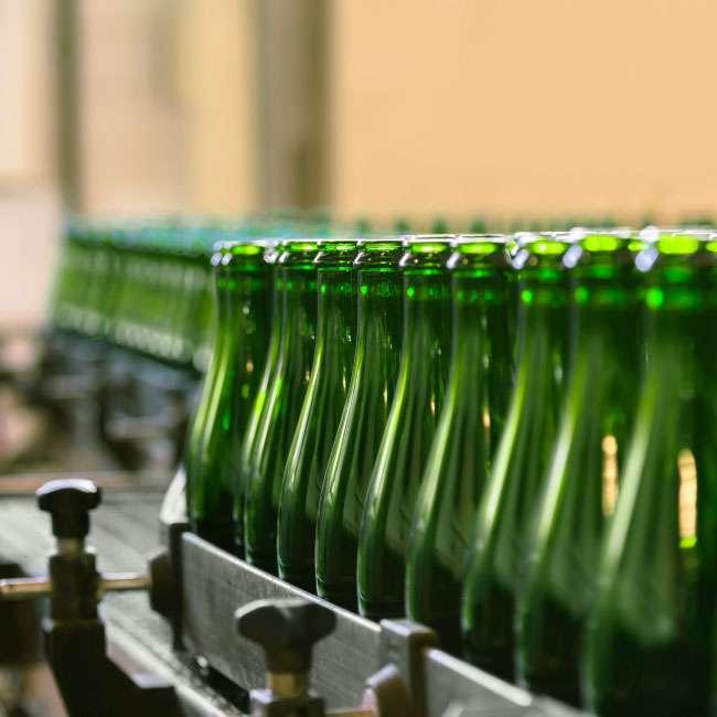craft brew bottle conveyor system line