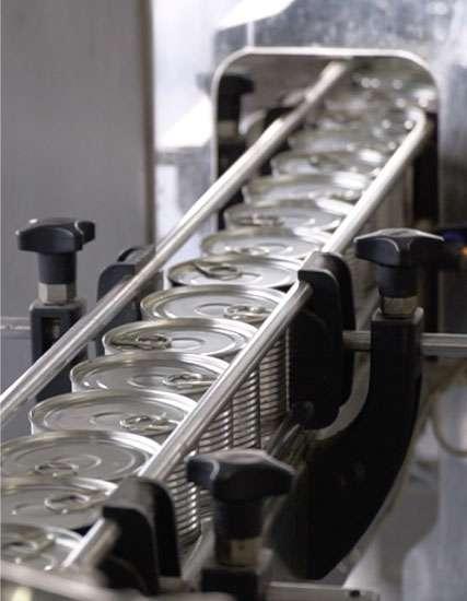 Canning Single Lane Conveyor System